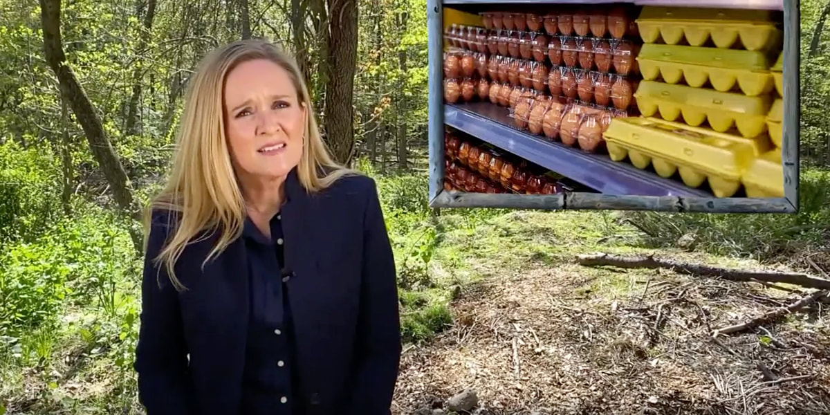 ​Full Frontal With Samantha Bee 2020
